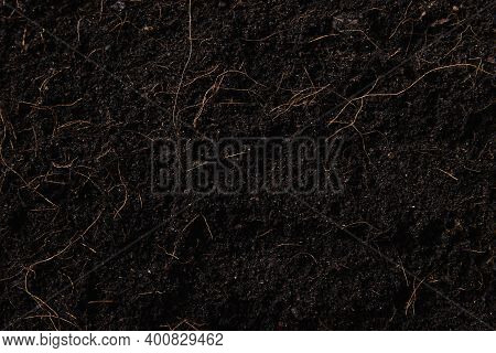Black Land For Plant Background, Top View Of Fresh Soil With Mulch For Gardening Texture, World Soil
