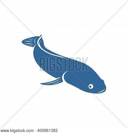Fish Cork Logo Vector, Creative Fish Cork Logo Design Concepts Template, Icon Symbol, Illustration