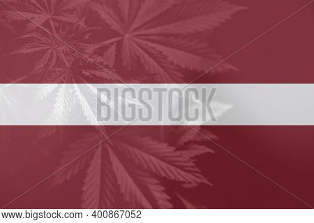 Weed Decriminalization In Latvia. Medical Cannabis In The Latvia. Leaf Of Cannabis Marijuana On The