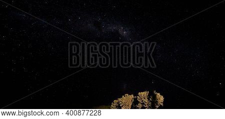 Night Sky With Milkyway Galaxy Over Small Tree Shrubs As Seen From Anakao, Madagascar, Southern Cros