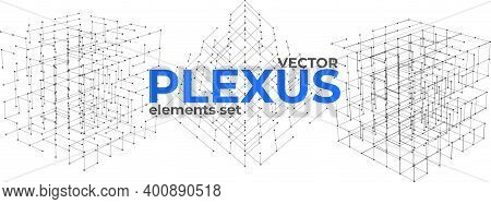 Abstract Plexus Design Elements Set. Geometric Structures From Dots And Lines. Polygonal Plexus Elem