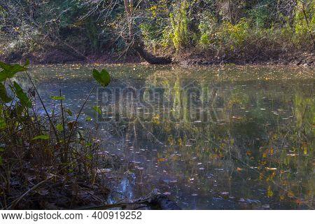 Augusta, Ga Usa - 12 12 20: Augusta Canal Trail A Calm River With Fall Foliage
