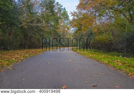 Augusta, Ga Usa - 12 12 20: Augusta Canal Trail Empty Paved Trail With Fall Foliage And Leaves