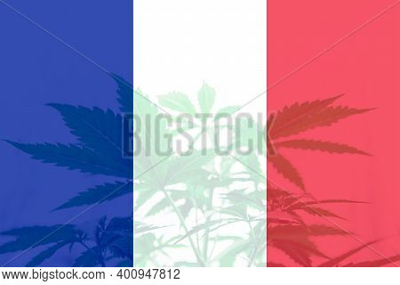 Cannabis Legalization In The France. Medical Cannabis In The France. Decriminalization Weed In Franc