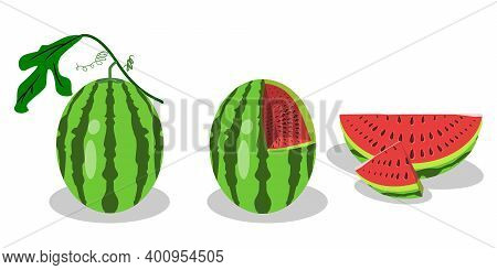 3 Forms Of Watermelon. Some Are Still Stemmed, Watermelons Are Hollow, And Pieces Of Watermelon