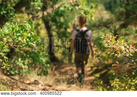 Blurred Rear View Of Girl With Backpack Walking Over Trail Through Forest. Female Hiking. Wandering