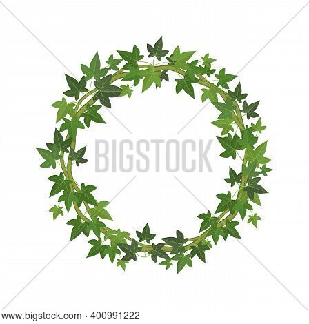Green Ivy Circle Frame. Wreath Of Fresh Leaves Decoration Round Plant Branch With Copy Space, Organi