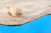 Caribbean sand background with shell and bright blue water poster