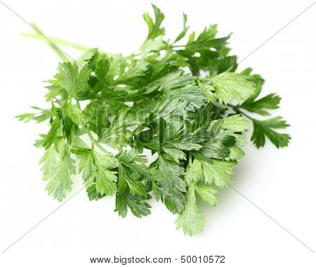 Fresh parsley spice