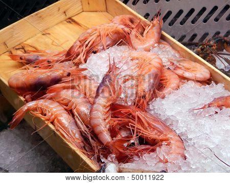 Display of red prawns at restaurant