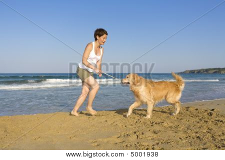 Young girl playing with her dogs on the beach poster