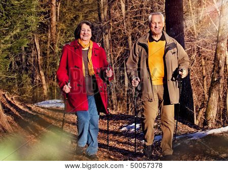 seniors walking in autumn forest / active