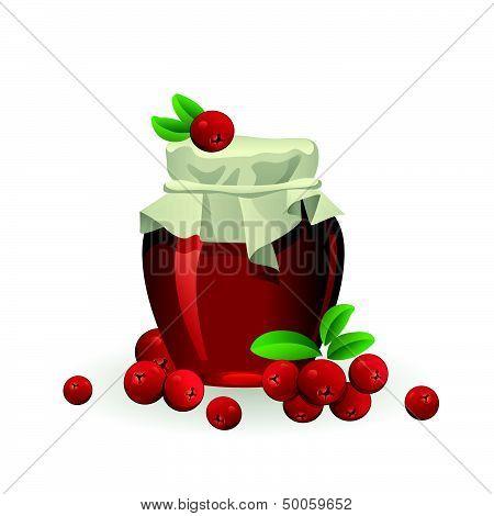 Cranberry jam jar with fresh berry