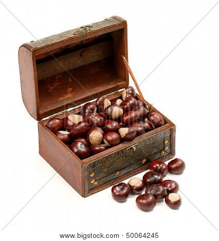 Chest with chestnut against white background