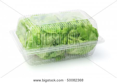 Salad Lettuce In Plastic Box On White Background
