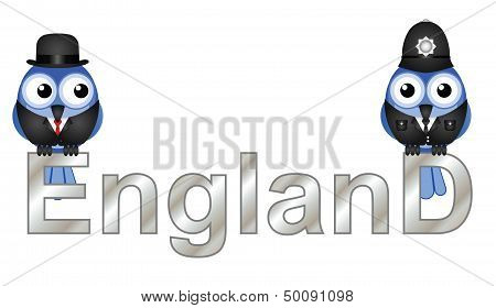 England Text with bird inhabitants isolated on white background poster