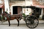 traditional calesa a horse drawn cab in the philippines dating from the spanish colonial period and still used in some parts of luzon such as here in vigan poster