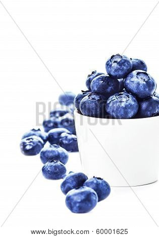 Blueberries In A Bowl Isolated On White Background Close Up. Bilberries Antioxidant Superfood Isolat
