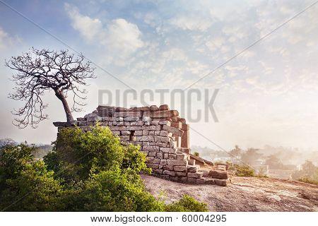 Temple Ruins In Mamallapuram