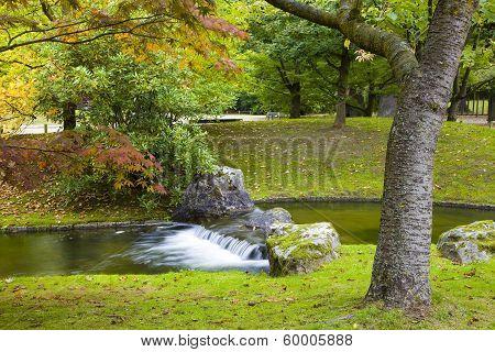 Small Waterfall In Japanese Garden