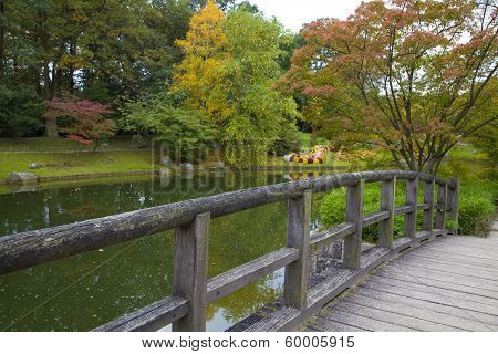 View From The Bridge On Pond In Japanese Garden, Hasselt, Belgium