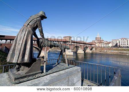 Panoramic View Of Pavia, Italy