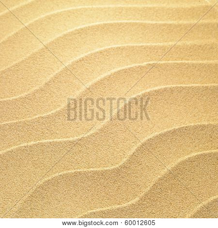 Sea sand background