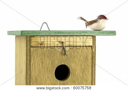 Tomtit On Top Of Birdhouse Closeup