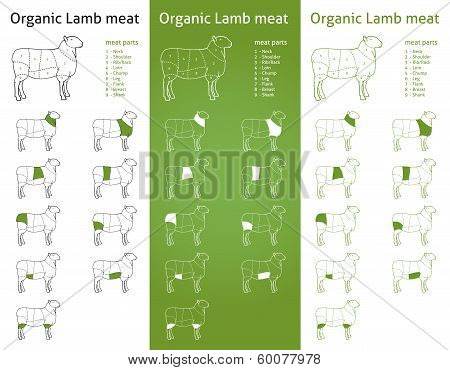 Meat cut parts icons set  for packaging and info-graphic poster