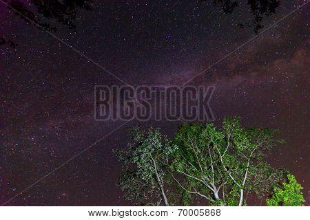 View to Milky Way Galaxy on nigh sky