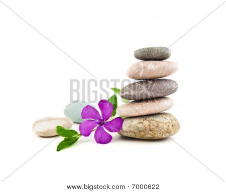 The Balanced Stones And Gentle Flower On A White Background