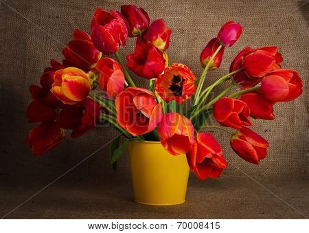 Beautiful Bouquet Of Colorful Tulips In Yellow Pot Isolated