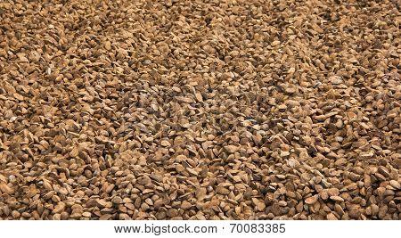 Huge Amount Of Brazil Nuts