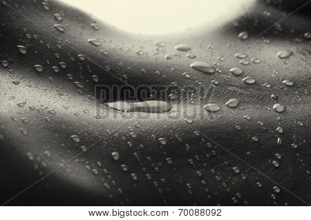 Bodyscape Of A Nude Woman With Wet Stomach And Back Lighting Artistic Conversion
