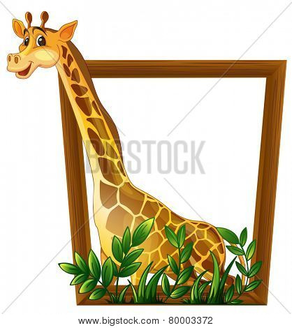 Illustration of a giraffe in a frame