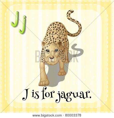 Illustration of an alphabet J is for  jaguar