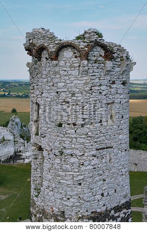 Tower of the ruined castle