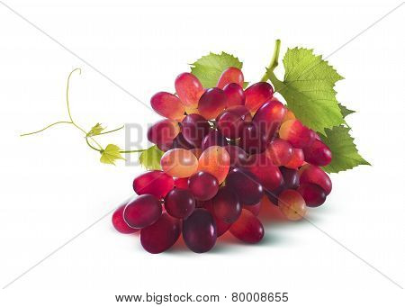 Red Grapes Bunch With Leaf Isolated On White Background