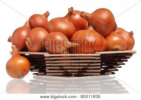 Gold Onions