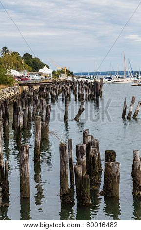 Wood Pilings Alongside Portland Coast
