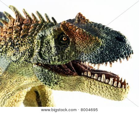 A Huge Allosaurus Dinosaur Against White