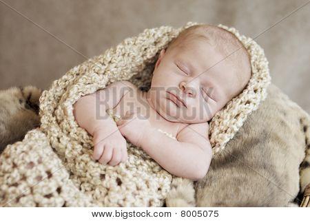 Sleeping newborn Baby im Kokon
