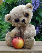 Handmade the sewed toy: teddy-bear Lucky with an apple among flowers poster