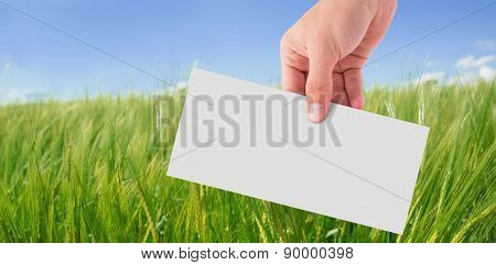 Hand showing card against green meadow