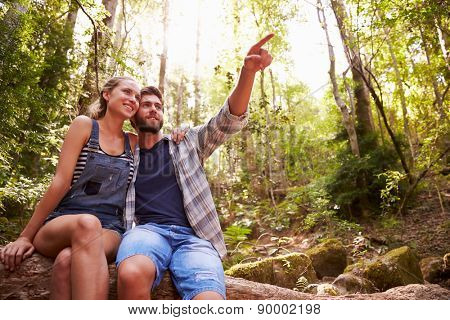 Couple Sitting On Tree Trunk In Forest Together