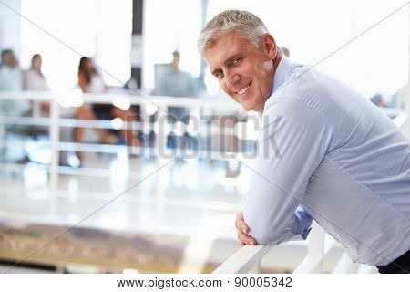Portrait of middle aged man in office