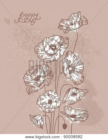 Poppies on vintage background