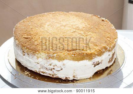 Basis for the cake