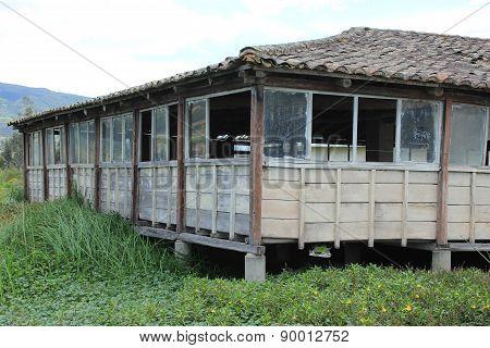 Building on a Marsh