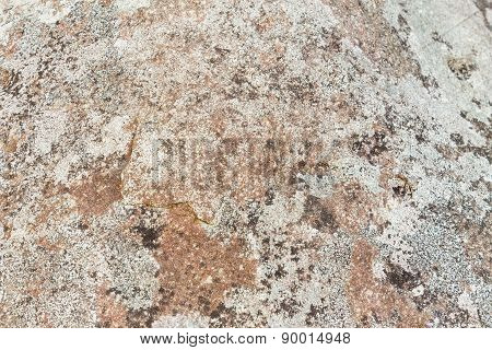 Close Up of rocky shore texture background